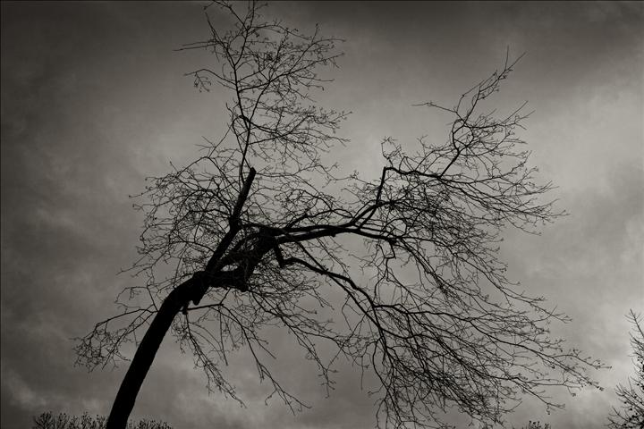 Original art for sale at UGallery.com | Impending Storm by ROBERT ULLMANN | $170 |  | ' h x ' w | http://www.ugallery.com/photography-impending-storm