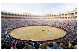 Discover Original Art by Bryan Solarski | Bullfight, Madrid  photography | Art for Sale Online at UGallery