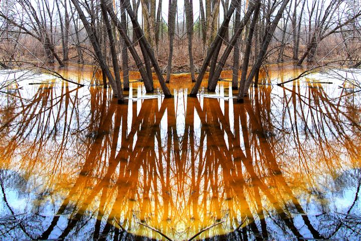 Original art for sale at UGallery.com | Reflect by GREGG OTTESON | $195 |  | ' h x ' w | http://www.ugallery.com/photography-reflect