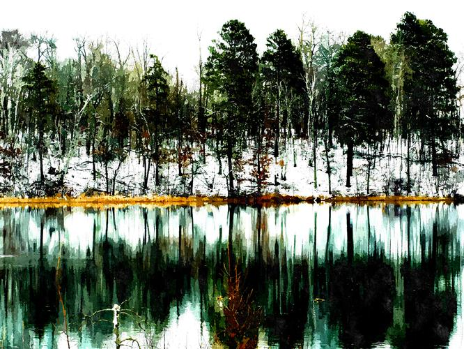 Original art for sale at UGallery.com | Evergreen by GREGG OTTESON | $195 |  | ' h x ' w | http://www.ugallery.com/photography-evergreen