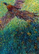 Discover Original Art by Iris Scott | Takenobu's Pheasant oil painting | Art for Sale Online at UGallery