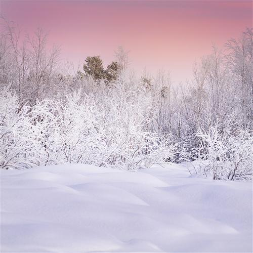 Original art for sale at UGallery.com | Lapland in Pink by ETIENNE ROUDAUT | $160 |  | ' h x ' w | http://www.ugallery.com/photography-lapland-in-pink