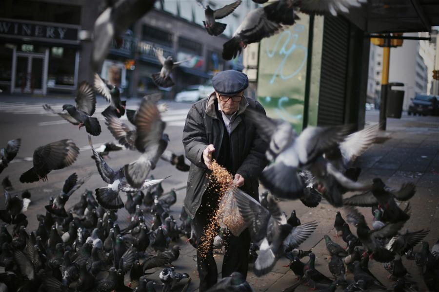 Original art for sale at UGallery.com | Pigeons in Buenos Aires by MARIA PLOTNIKOVA | $245 |  | ' h x ' w | http://www.ugallery.com/photography-pigeons-in-buenos-aires