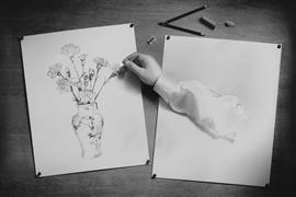 Still Life art,Surrealism art,photography,Hand Drawn