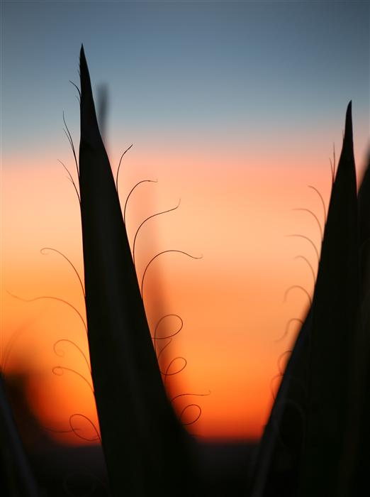 Original art for sale at UGallery.com | Sunset Santa Fe 1 by GRANT TAYLOR | $255 |  | ' h x ' w | http://www.ugallery.com/photography-sunset-santa-fe-1