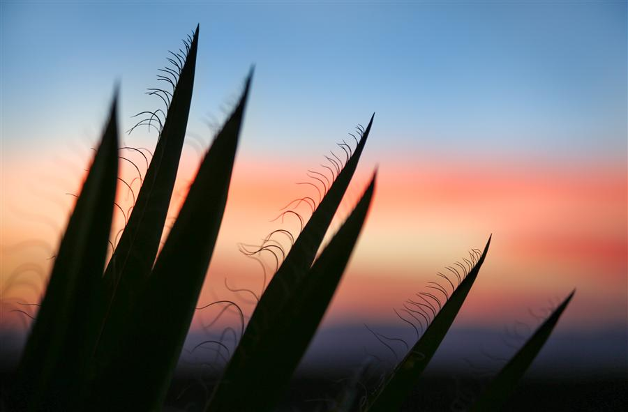 Original art for sale at UGallery.com | Sunset Santa Fe 2 by GRANT TAYLOR | $170 |  | ' h x ' w | http://www.ugallery.com/photography-sunset-santa-fe-2