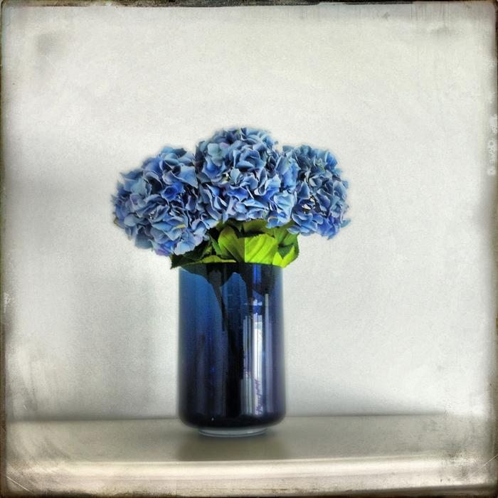 Original art for sale at UGallery.com | Hydrangeas in Blue Vase by GREG DYRO | $120 |  | ' h x ' w | http://www.ugallery.com/photography-hydrangeas-in-blue-vase