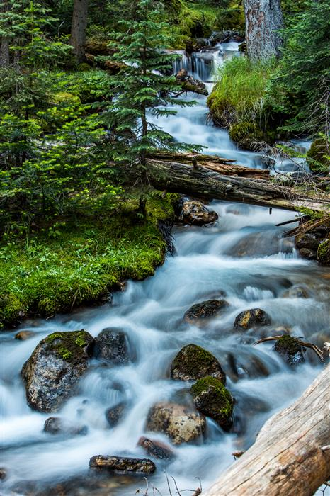 Discover Original Art by Jay Moore | Glacier Creek photography | Art for Sale Online at UGallery