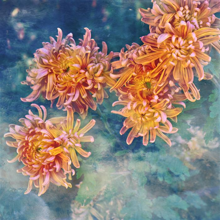 Original art for sale at UGallery.com | Flower Power in Pastel by GREG DYRO | $150 |  | ' h x ' w | http://www.ugallery.com/photography-flower-power-in-pastel