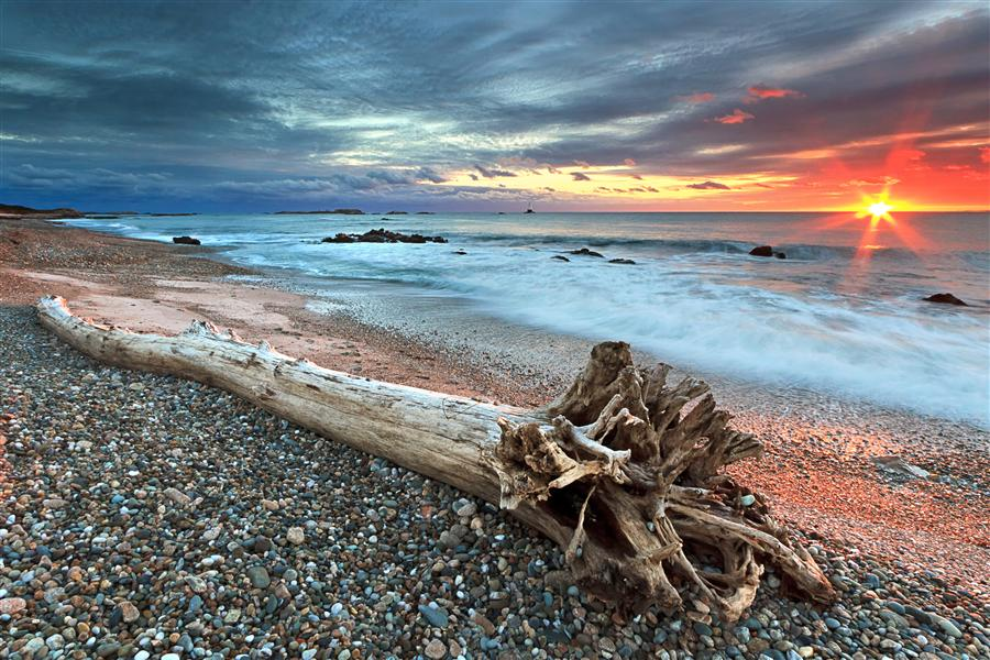 Original art for sale at UGallery.com | Sakonnet Driftwood by KATHERINE GENDREAU | $170 |  | ' h x ' w | http://www.ugallery.com/photography-sakonnet-driftwood