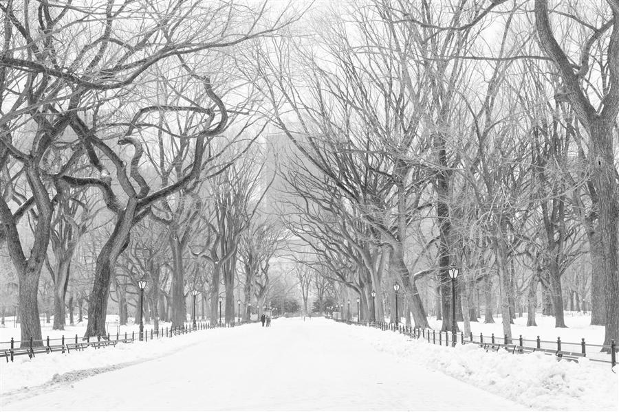 Original art for sale at UGallery.com | Snowy Poet's Walk in Central Park by REBECCA PLOTNICK | $220 |  | ' h x ' w | http://www.ugallery.com/photography-snowy-poet-s-walk-in-central-park