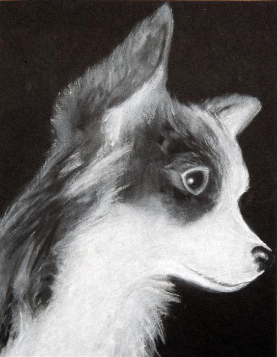 Discover Original Art by Boys & Girls Clubs of San Francisco | My Dog chalk drawing | Art for Sale Online at UGallery