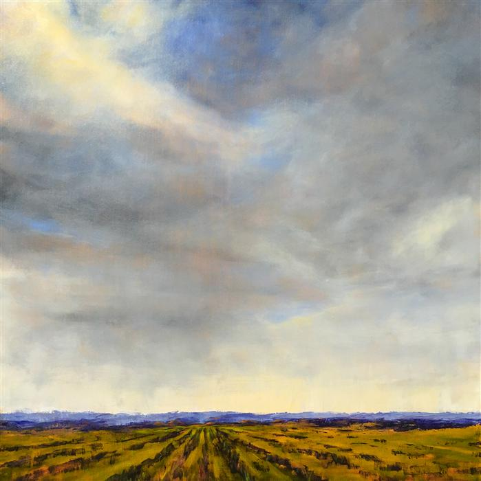 Original art for sale at UGallery.com | Field XVI by MANDY MAIN | $1,975 | Oil painting | 36' h x 36' w | http://www.ugallery.com/oil-painting-field-xvi