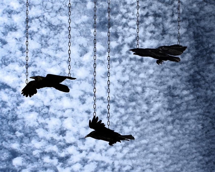 Original art for sale at UGallery.com | Even Birds are Chained to the Sky by LOVEDAY FUNCK | $215 |  | ' h x ' w | http://www.ugallery.com/photography-even-birds-are-chained-to-the-sky