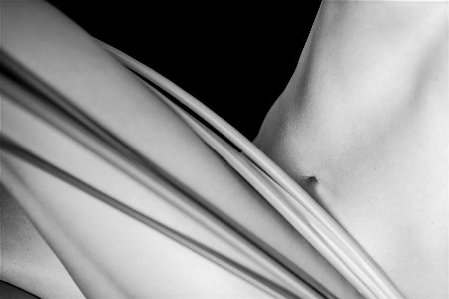 Discover Original Art by Jan Gordon | Body with Leaves photography | Art for Sale Online at UGallery