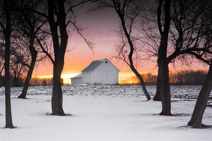 Original art for sale at UGallery.com | Morning on the Farm by LORIANNE ENDE | $145 |  | ' h x ' w | http://www.ugallery.com/photography-morning-on-the-farm