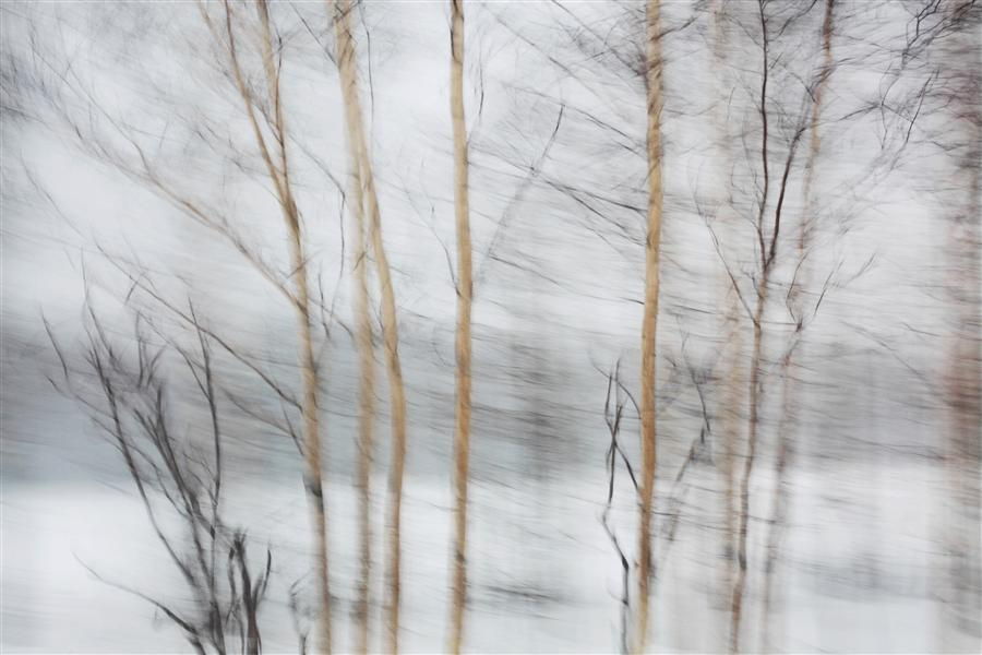 Original art for sale at UGallery.com | Winter Road by MARIA PLOTNIKOVA | $145 |  | ' h x ' w | http://www.ugallery.com/photography-winter-road