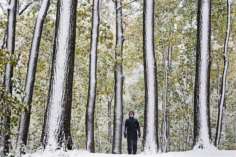 Discover Original Art by Maria Plotnikova | First Snow in Moscow photography | Art for Sale Online at UGallery