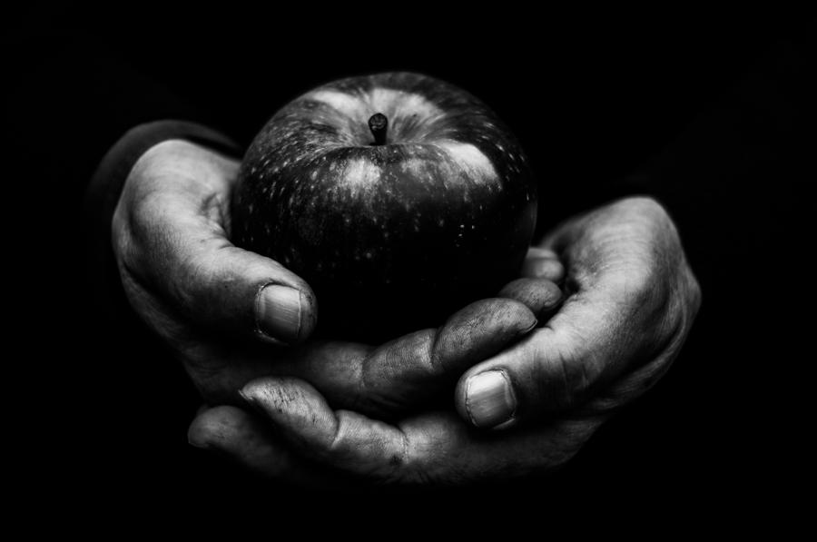 Discover Original Art by Alicja Brodowicz | First Apple photography | Art for Sale Online at UGallery