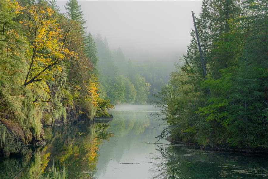 Original art for sale at UGallery.com | Moody Morning by ROSS LIPSON | $245 |  | ' h x ' w | http://www.ugallery.com/photography-moody-morning