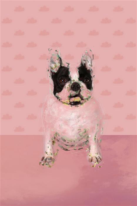 Original art for sale at UGallery.com | Bulldog in the Pink Room by SUSA DOSA | $200 |  | ' h x ' w | http://www.ugallery.com/photography-bulldog-in-the-pink-room