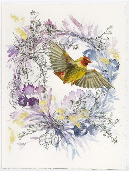Discover Original Art by Ashley Cecil | Red-Faced Star Finch on Purple Wreath mixed media artwork | Art for Sale Online at UGallery