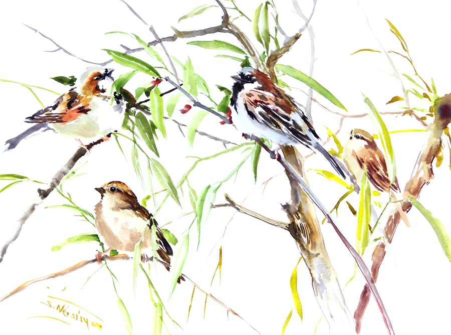 Discover Original Art by Suren Nersisyan | Sparrows watercolor painting | Art for Sale Online at UGallery