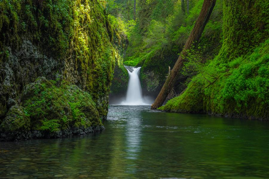 Original art for sale at UGallery.com | Punchbowl Falls by ROSS LIPSON | $245 |  | ' h x ' w | http://www.ugallery.com/photography-punchbowl-falls