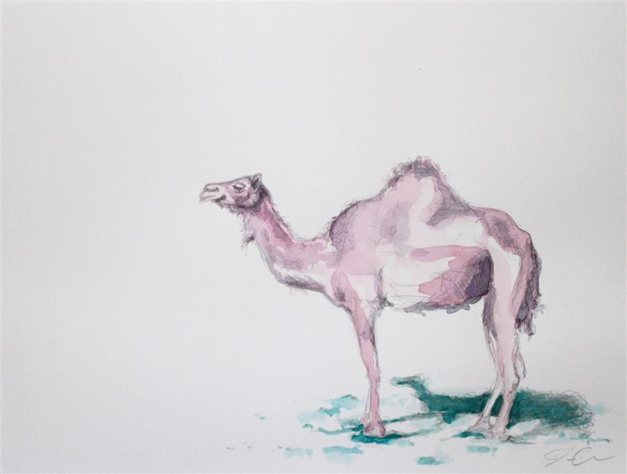 Discover Original Art by Jackie Graham | Pink Camel watercolor painting | Art for Sale Online at UGallery