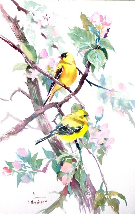 Discover Original Art by Suren Nersisyan | American Goldfinch and Apple Blossom watercolor painting | Art for Sale Online at UGallery