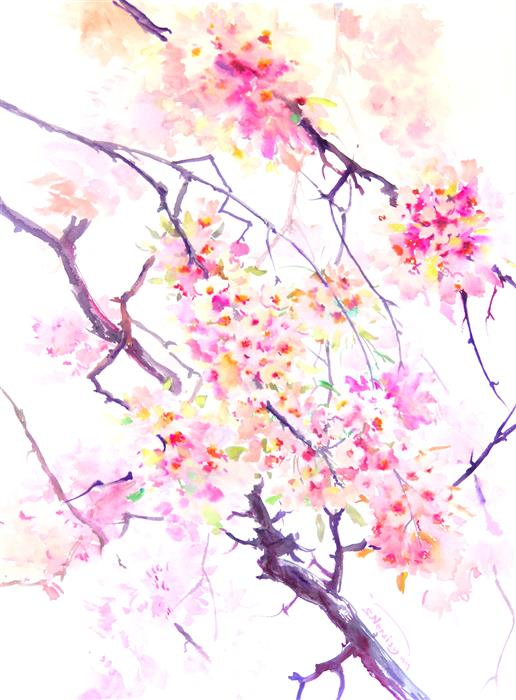 Discover Original Art by Suren Nersisyan | Cherry Blossom (Sakura) watercolor painting | Art for Sale Online at UGallery