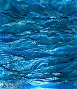 Abstract art,Non-representational art,Modern  art,mixed media artwork,Cerulean Rhapsody