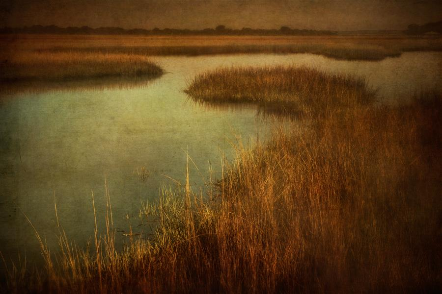 Discover Original Art by Wiff Harmer | Cumberland Island Marsh photography | Art for Sale Online at UGallery