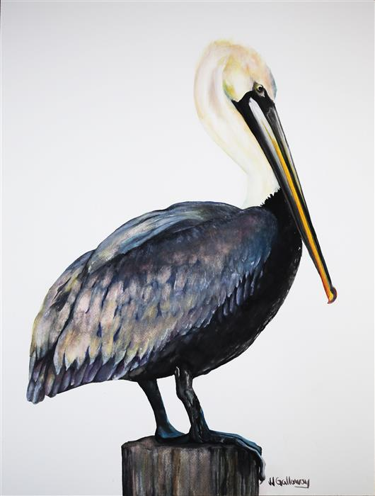 Discover Original Art by JJ Galloway | Pelican watercolor painting | Art for Sale Online at UGallery