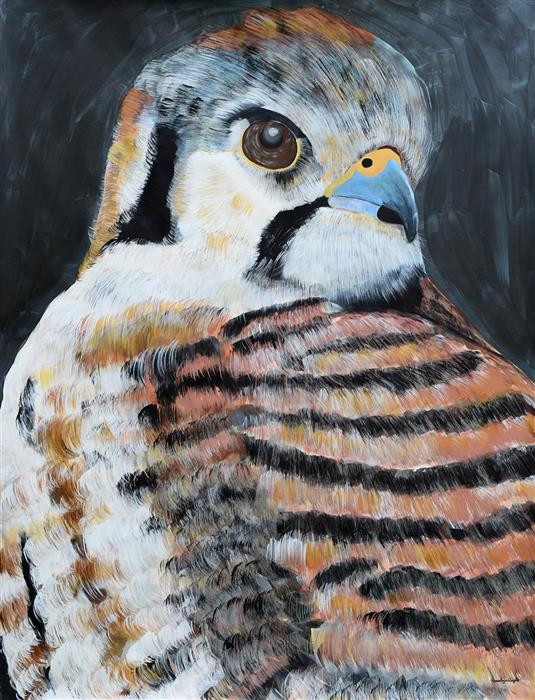 Discover Original Art by Natalie Wright | Kestrel Hawk acrylic painting | Art for Sale Online at UGallery