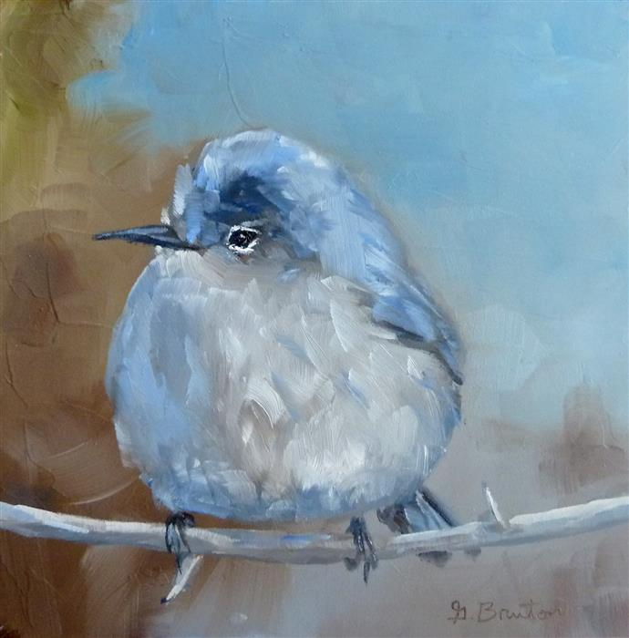Original art for sale at UGallery.com | Blue-Gray Gnatcatcher by GARY BRUTON | $300 | Oil painting | 6' h x 6' w | http://www.ugallery.com/oil-painting-blue-gray-gnatcatcher