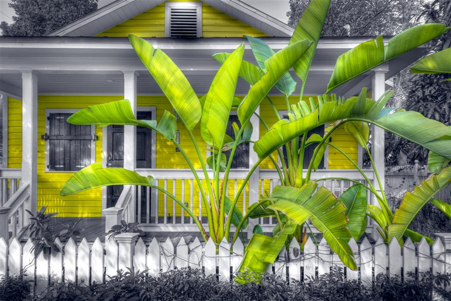 Discover Original Art by Mike Ring | Caribbean Cottage   photography | Art for Sale Online at UGallery