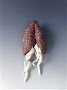 Non-representational art,ceramic artwork,Awakened Red Pod