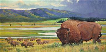 Animals art,Nature art,Realism art,Representational art,oil painting,Yellowstone Bison