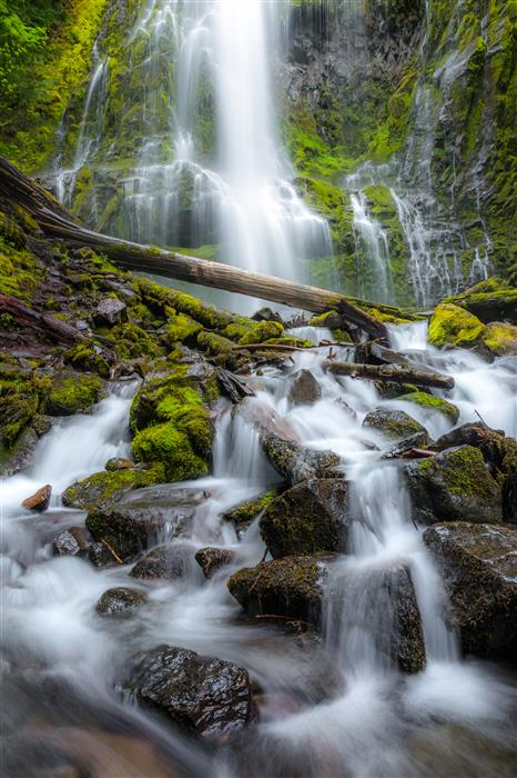 Original art for sale at UGallery.com | Proxy Falls by ROSS LIPSON | $245 |  | ' h x ' w | http://www.ugallery.com/photography-proxy-falls