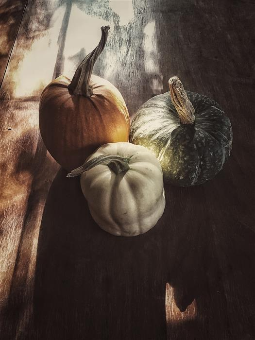 Discover Original Art by Kathleen Finlay | Fall Fruit photography | Art for Sale Online at UGallery