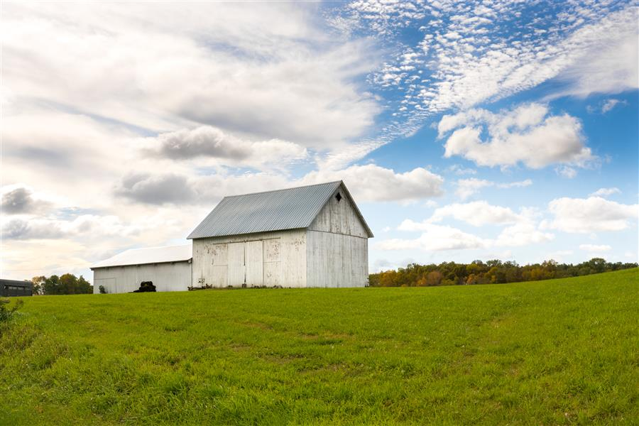 Original art for sale at UGallery.com | Favorite Barn by LORIANNE ENDE | $145 |  | ' h x ' w | http://www.ugallery.com/photography-favorite-barn