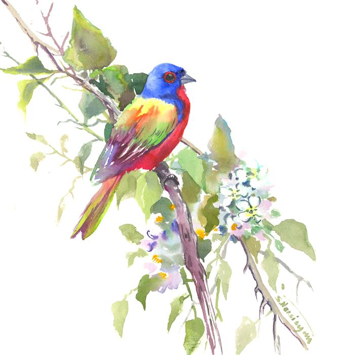 Discover Original Art by Suren Nersisyan | Painted Bunting and Spring Blossom watercolor painting | Art for Sale Online at UGallery