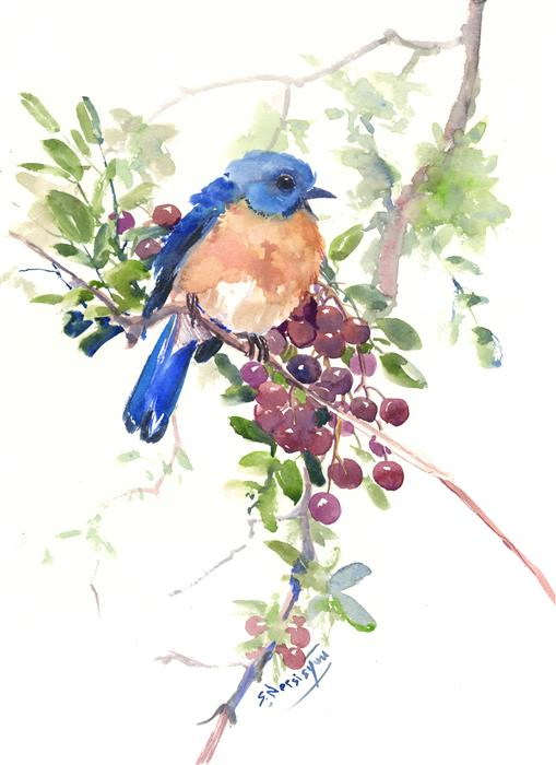 Discover Original Art by Suren Nersisyan | Bluebird and Berries watercolor painting | Art for Sale Online at UGallery