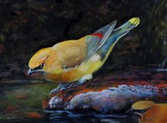 Animals art,Nature art,Realism art,Representational art,oil painting,Waterfall and Waxwings