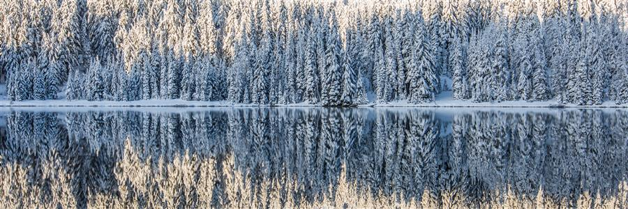 Discover Original Art by Ross Lipson | Winter Wonderland photography | Art for Sale Online at UGallery