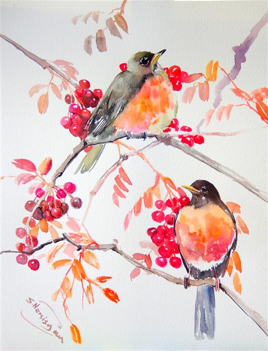 Discover Original Art by Suren Nersisyan | American Robins and Fall Berries watercolor painting | Art for Sale Online at UGallery