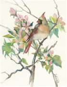 Impressionism art,Animals art,Nature art,Flora art,Representational art,watercolor painting,Cardinal and Apple Tree Blossom